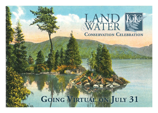 LGLC's annual Celebration will be held virtually this year.
